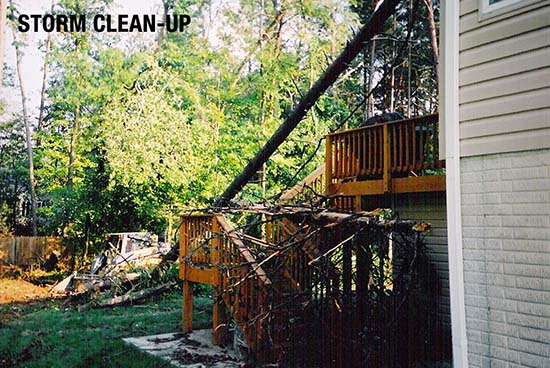 storm cleanup central florida